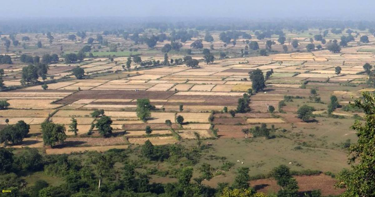 Fields in Jabalpur