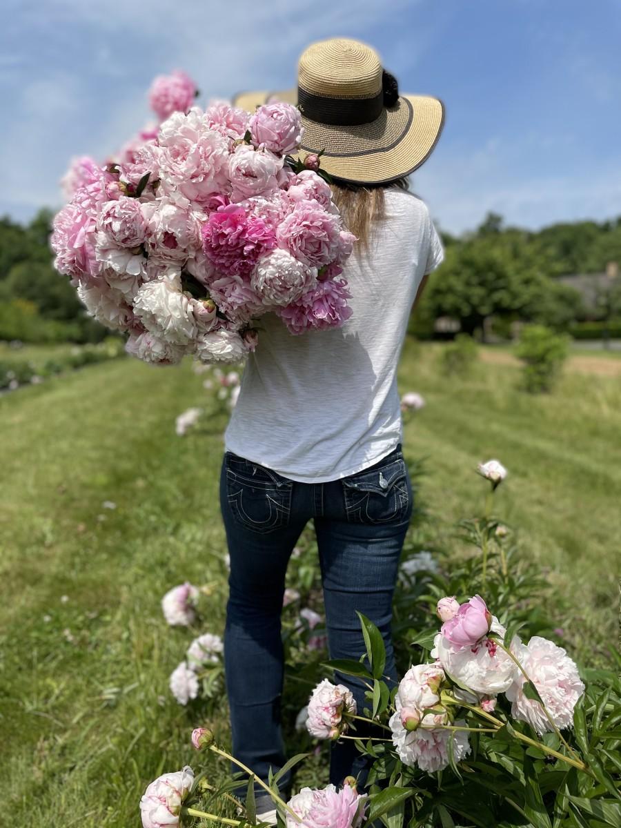 Happy harvesting!