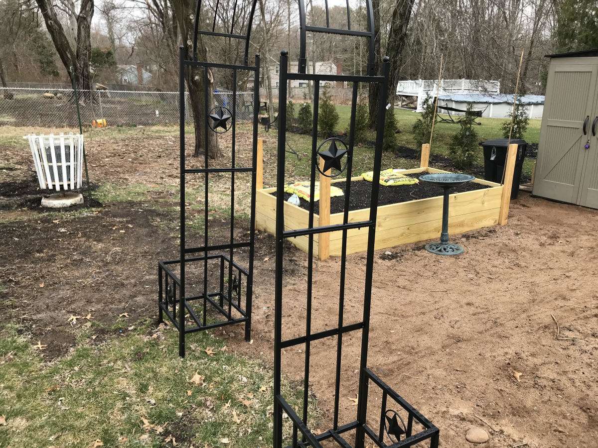 Arch trellis for growing vegetables vertically.