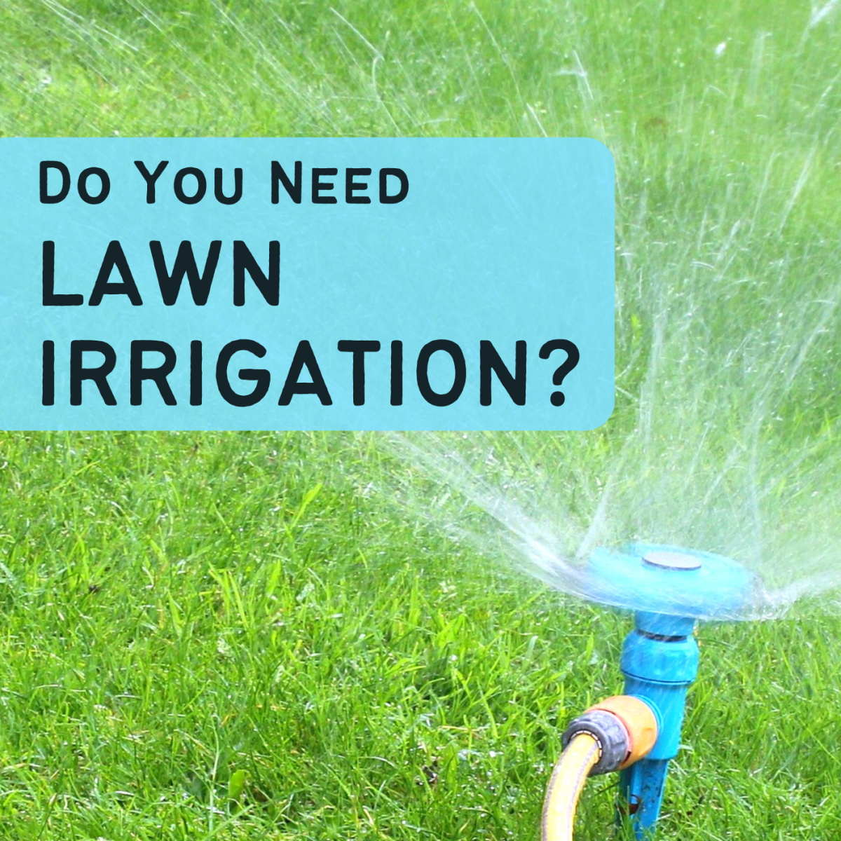 Learn about the common types of lawn irrigation and whether installing an irrigation system could benefit your yard.