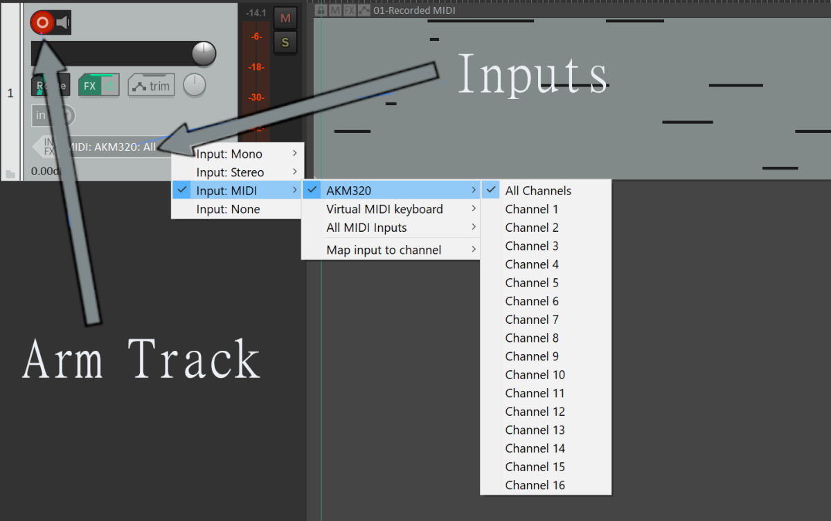 In Reaper, click the Arm Track button to see the Inputs option. Then select your MIDI device and click All Channels. My MIDI device is AKM320