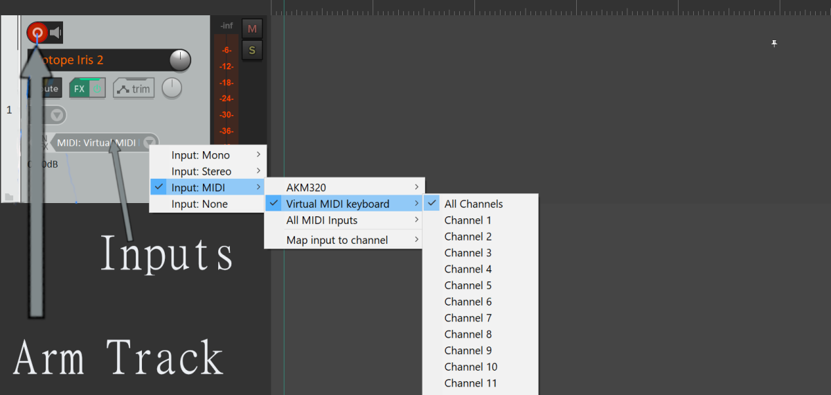 In Reaper, go to Inputs, click Input: MIDI > Virtual MIDI keyboard > All Channels to set up a Virtual MIDI Keyboard