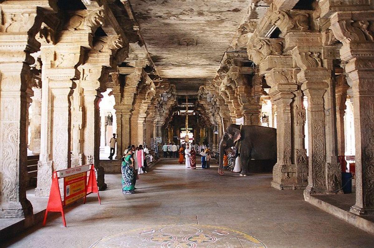 An elephant among the pillars of the Srirangam temple corridor in Srirangam, Trichy.