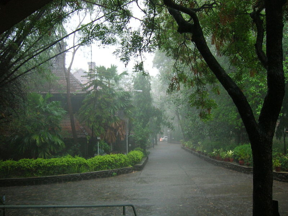 The nature at its romantic feel......Scenery of a lovely Kerala village.