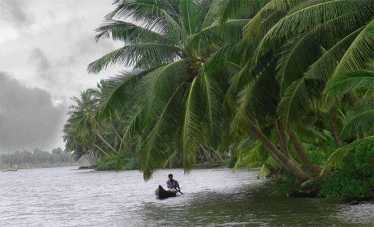 The Enchanting Kerala during a Monsoon period