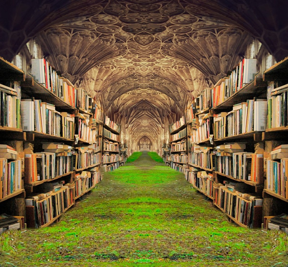 Books  provide you with an escape of realty