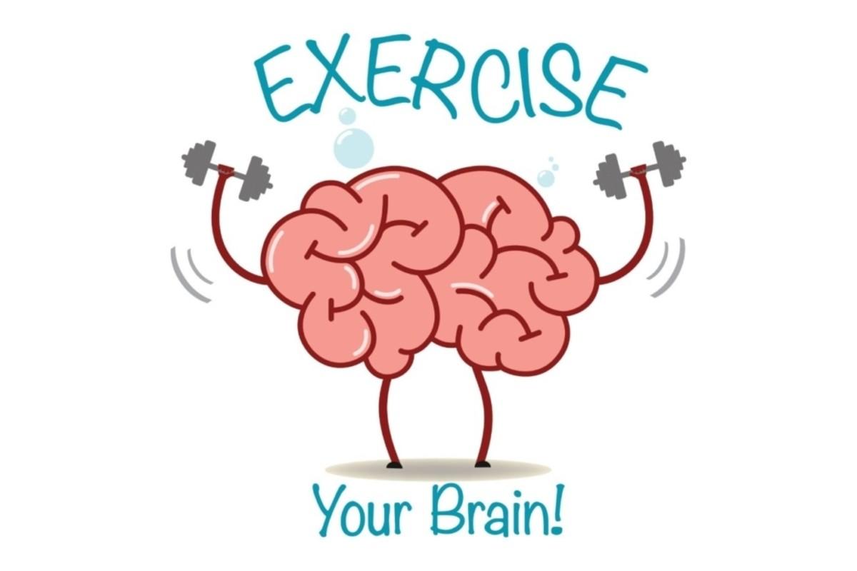 Exercise Brain Regularly