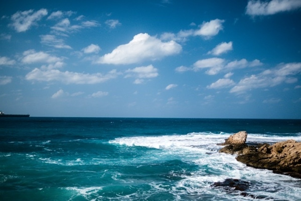 poems-of-from-the-beach-12