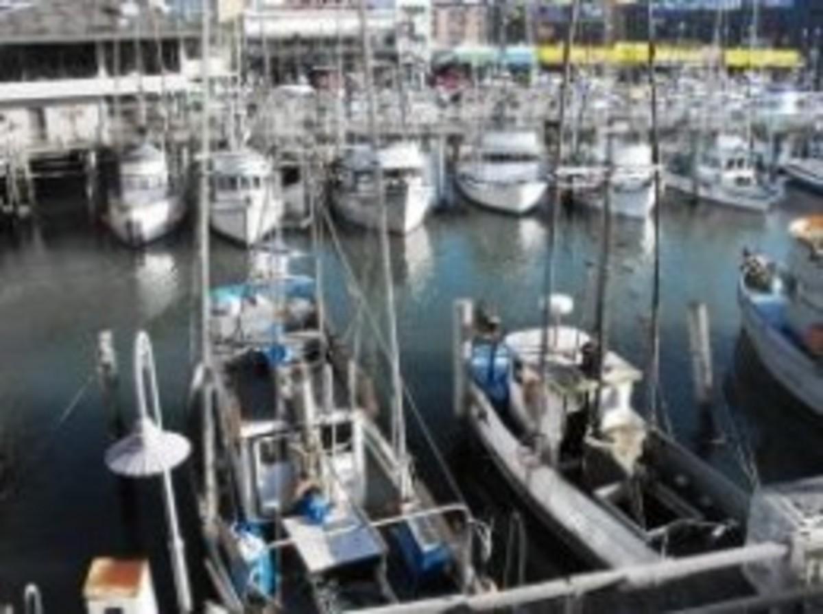 No.9 Fisherman's Wharf/Fisherman's Grotto Restaurant