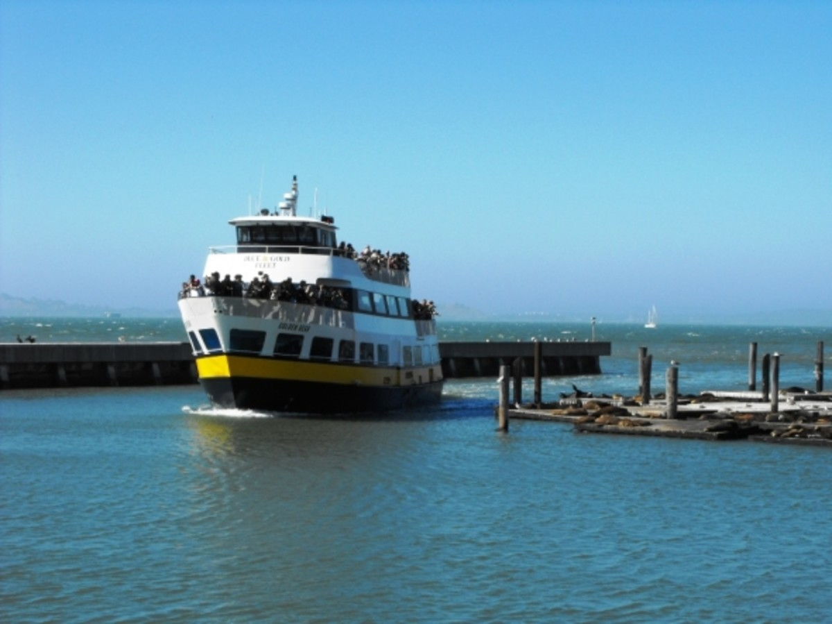 Another Bay Cruises Ferry and sea loins