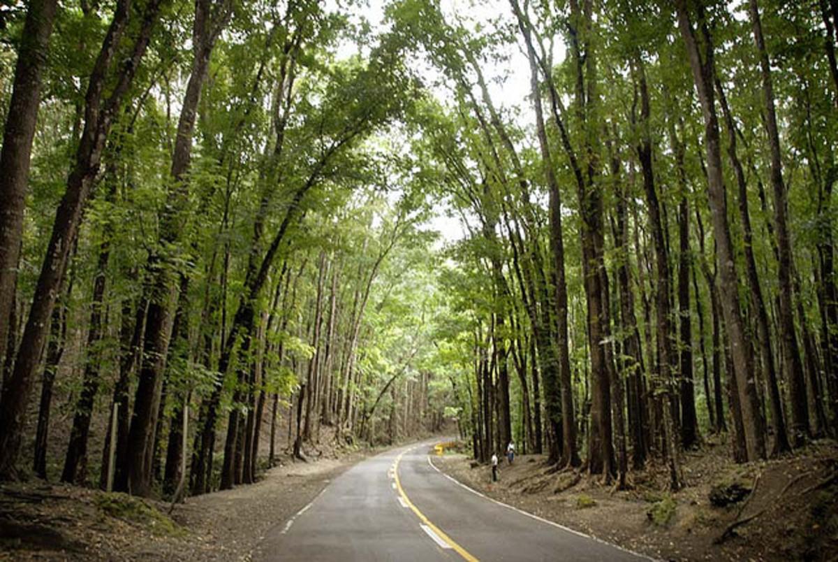 Loboc, Bohol, Philippines