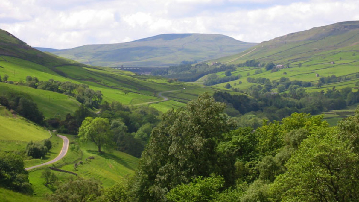 High pastures in Upper Nidderdale - scenic beauty, and lots of green (few buildings or houses)