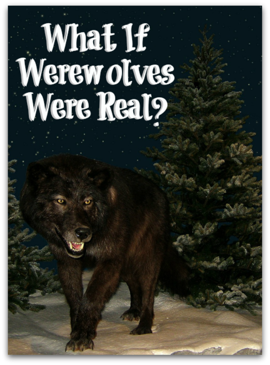Do you believe in werewolves?