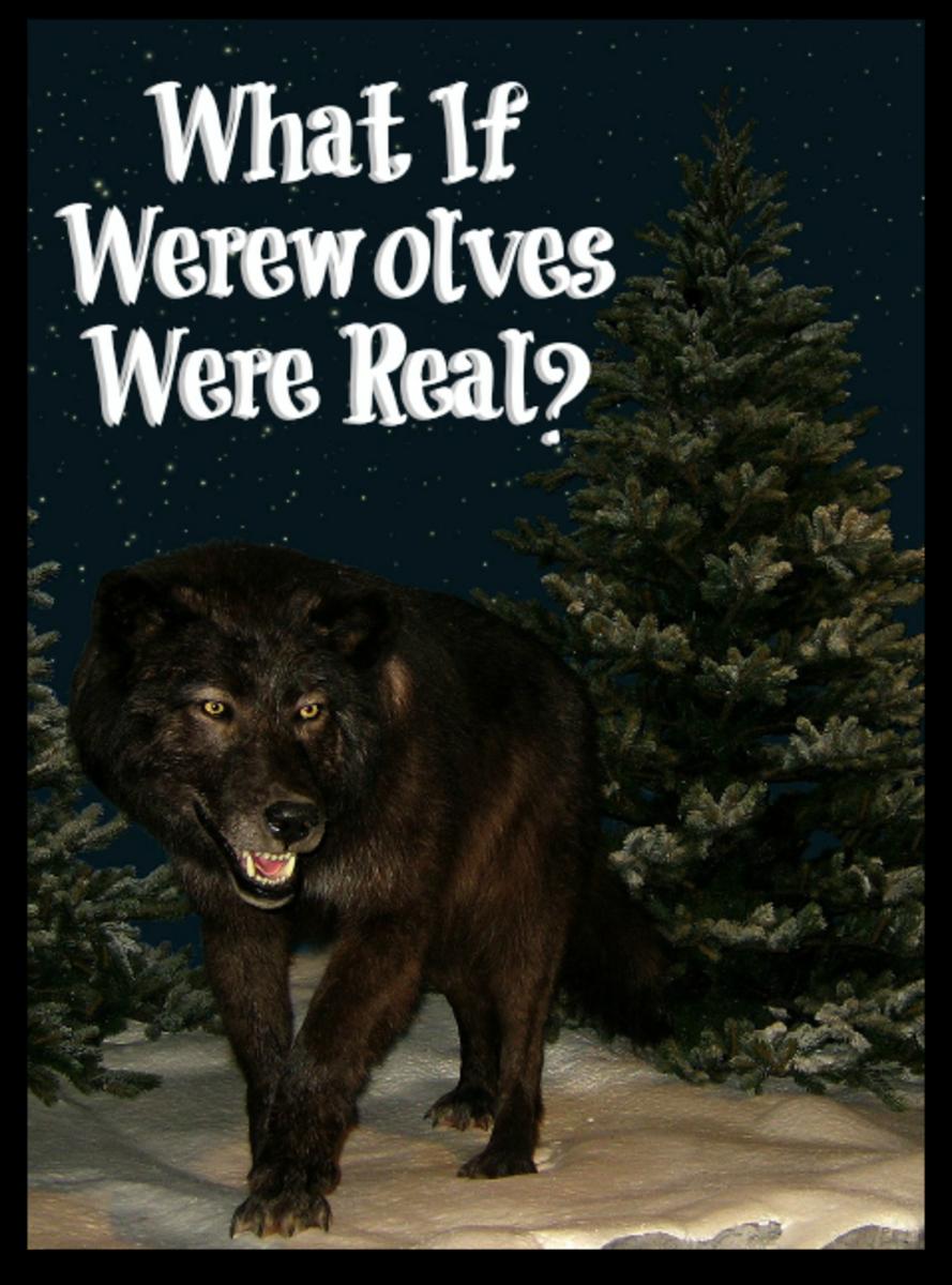 Do you believe in werewolves?