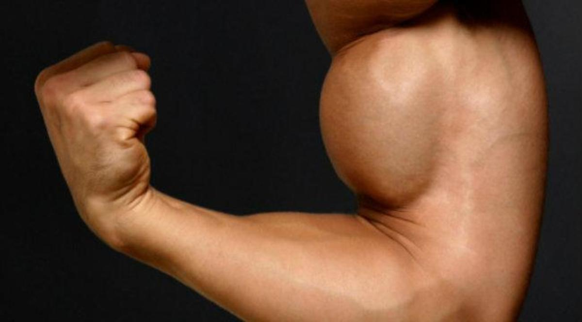 How to build big arms! Part 1- Biceps