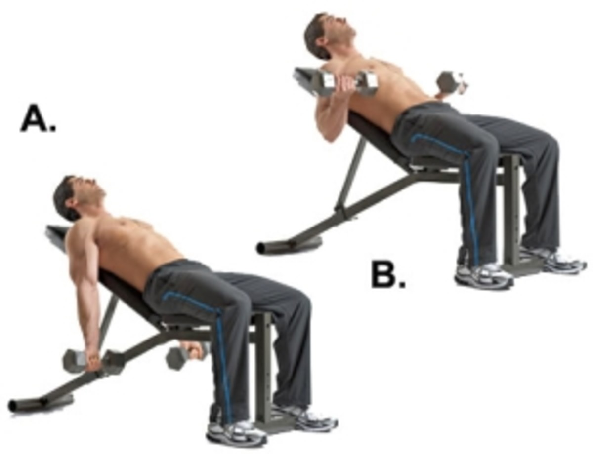http://www.build-some-muscle.com/images/incline-dumbbell-curl.jpg