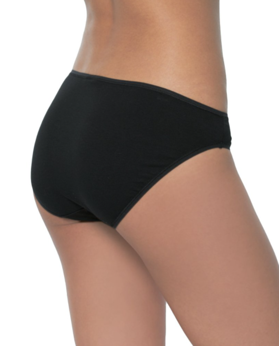 Bikini style panties (viewed from the back).  Notice how this style is similar to regular briefs but with slightly less coverage.