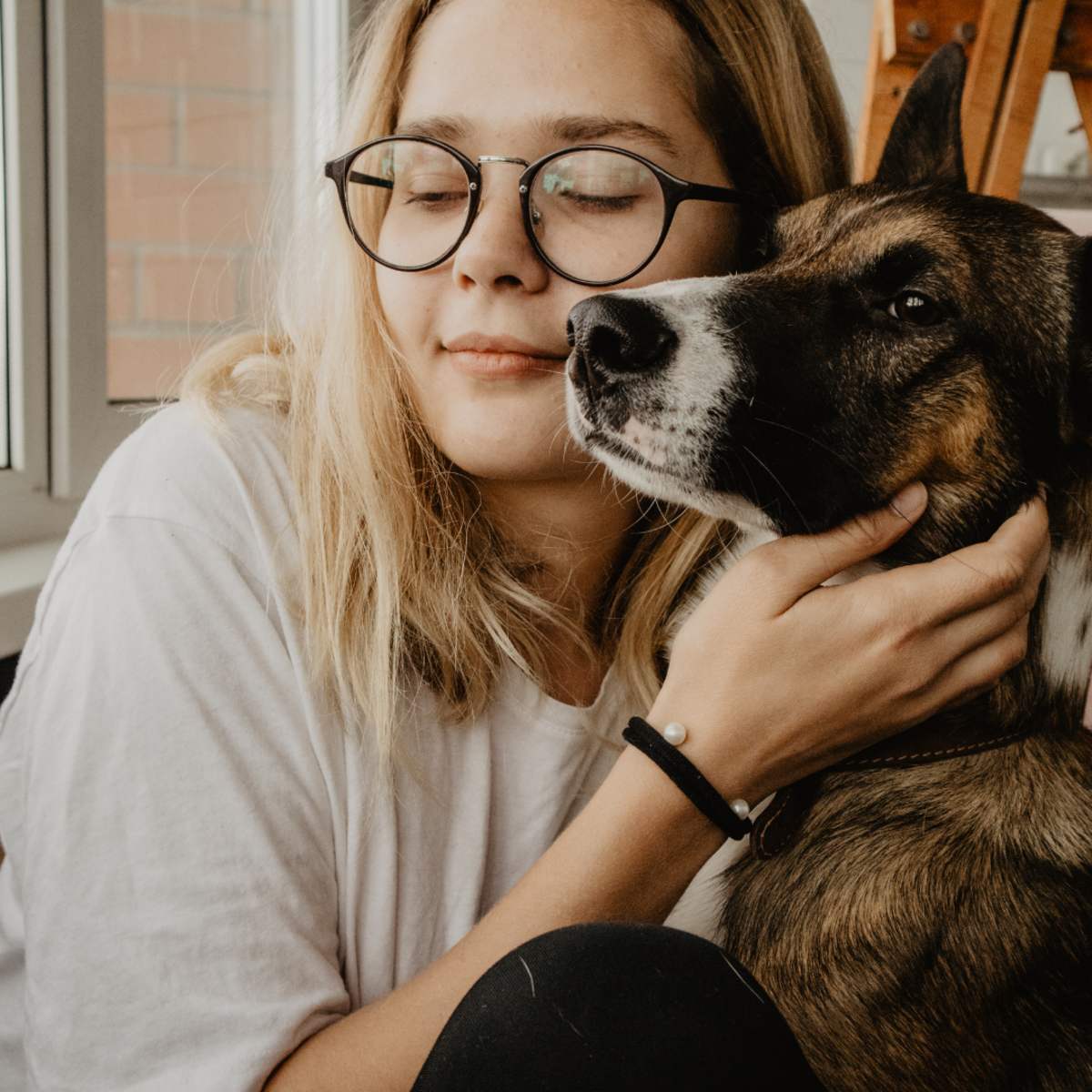 how-to-spot-treat-anxiety-in-dogs