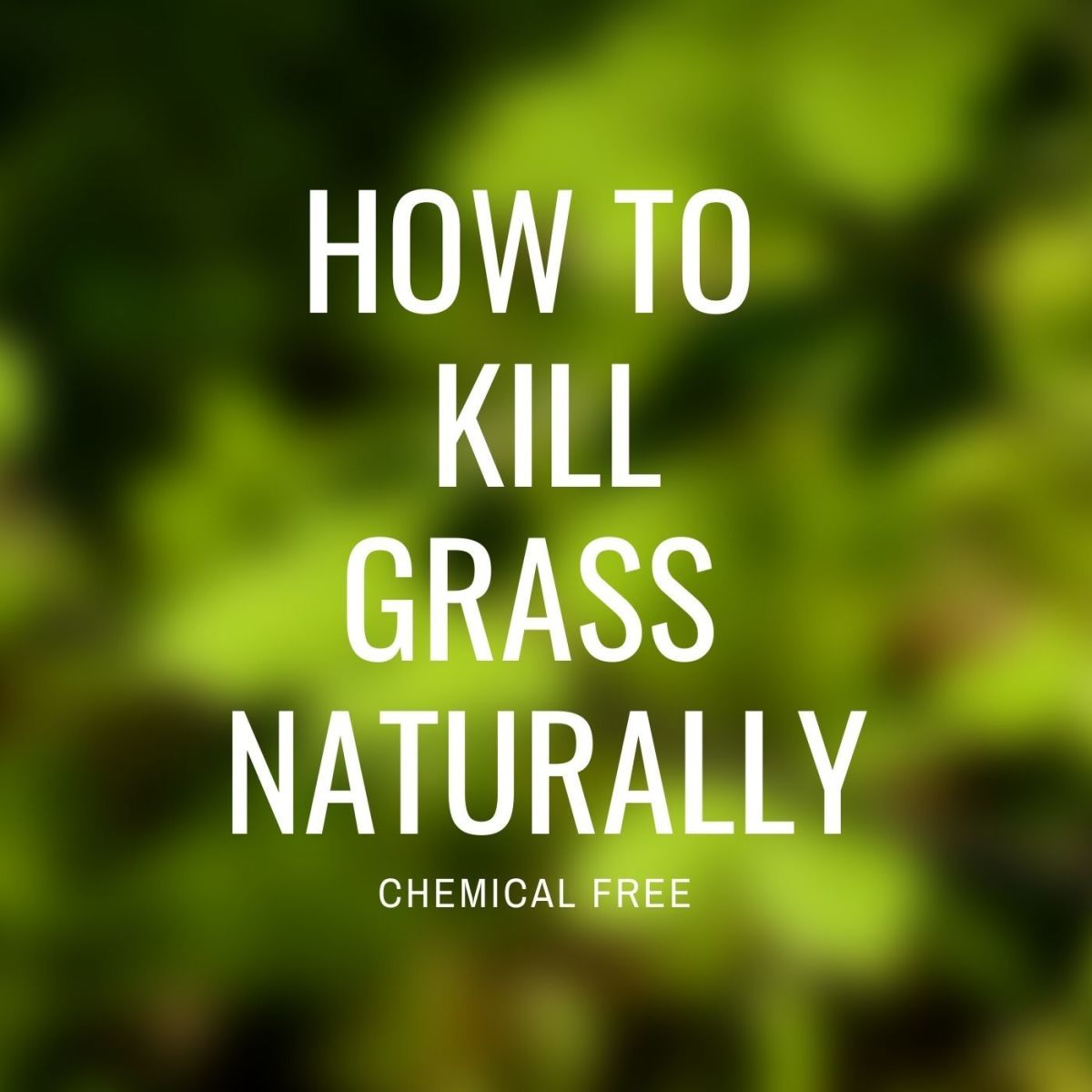 You can kill grass without harsh chemicals!
