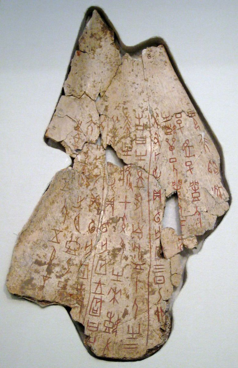 Ox scapula recording divinations by Zhēng 爭 in the reign of King Wu Ding