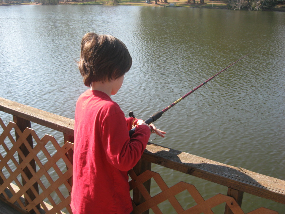 Fun Activities for Kids? Give fishing a try!