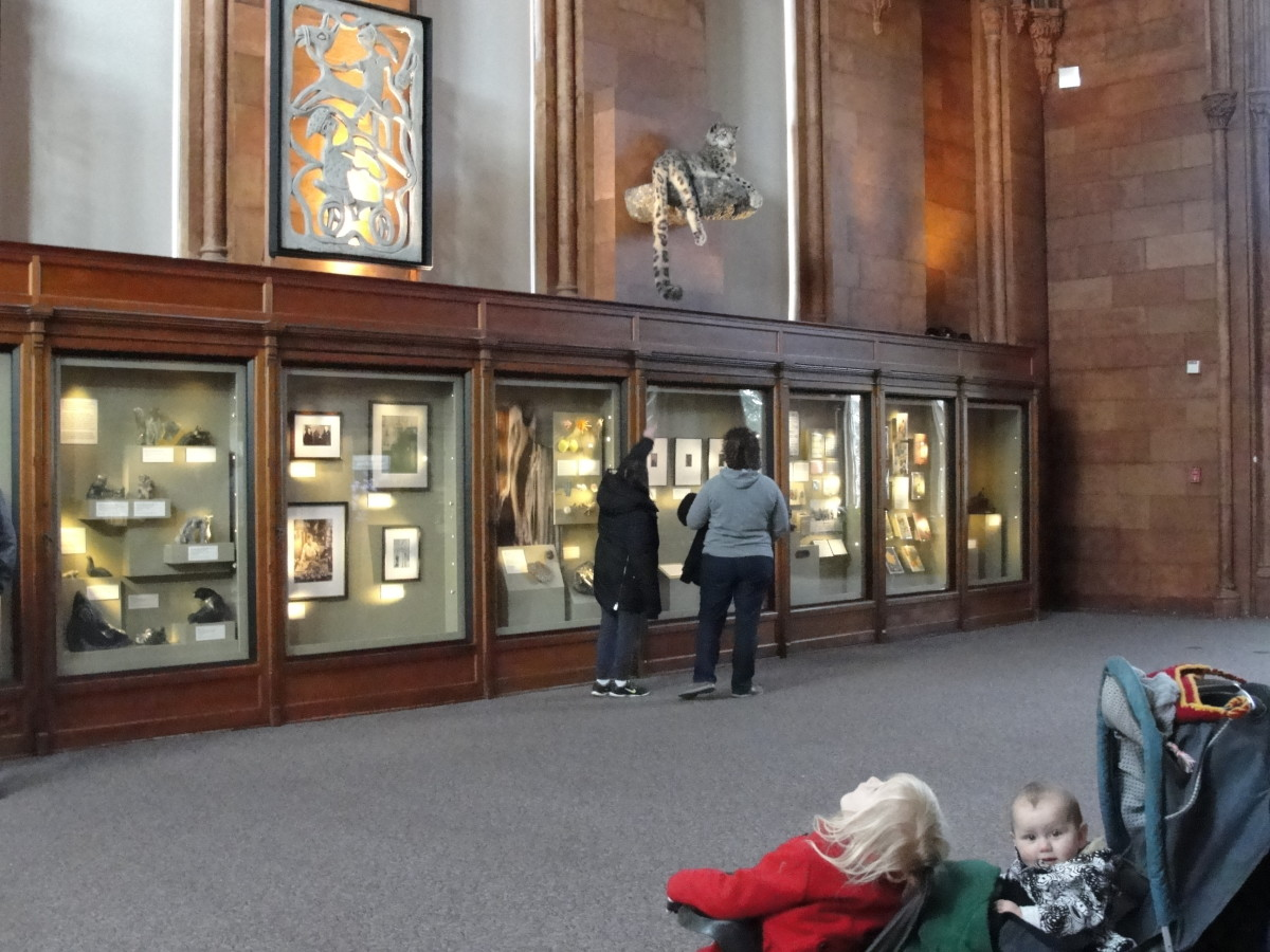 Viewing a selection of exhibits at the Smithsonian Castle