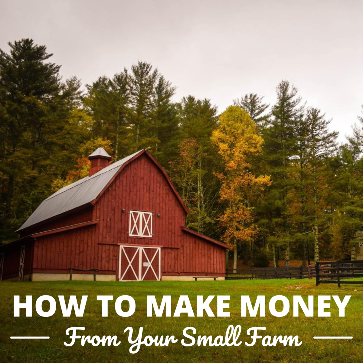 Below are 27 ways to make extra money via your farm or vacant land.