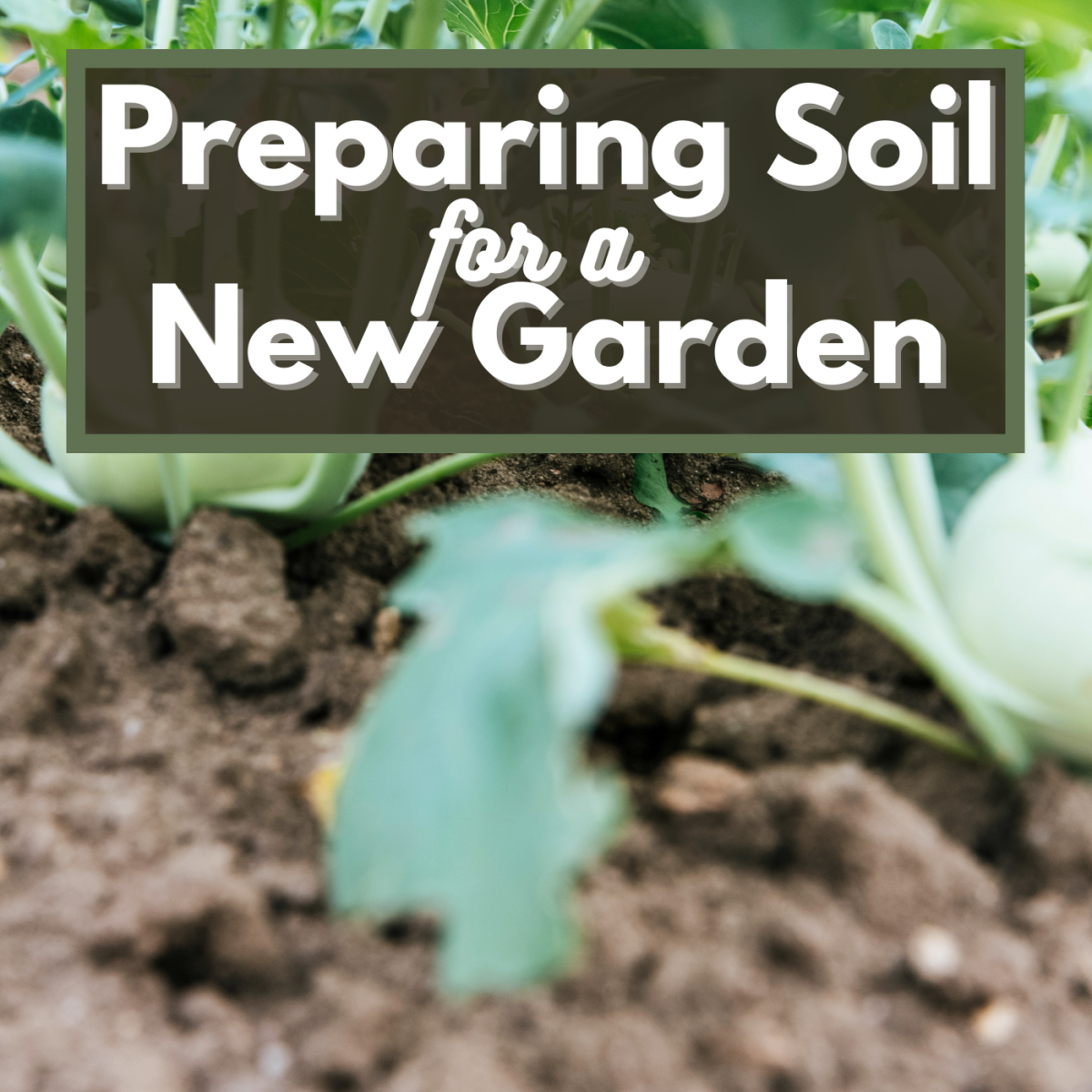 Step-by-step guide to preparing soil for a new gardening season.