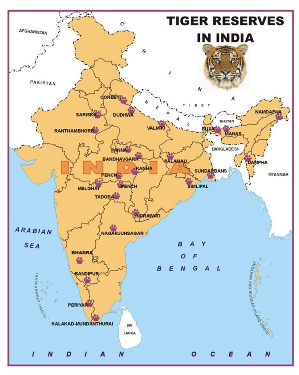 Tiger Distribution Map