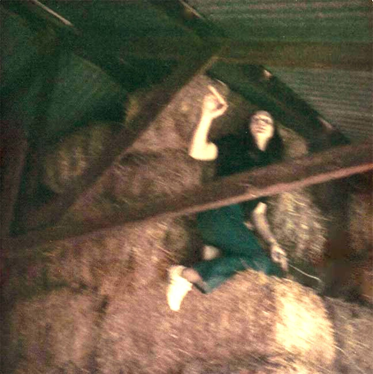 My job to feed the horses meant I had to climb into the rafters to pull a bail of hay down.