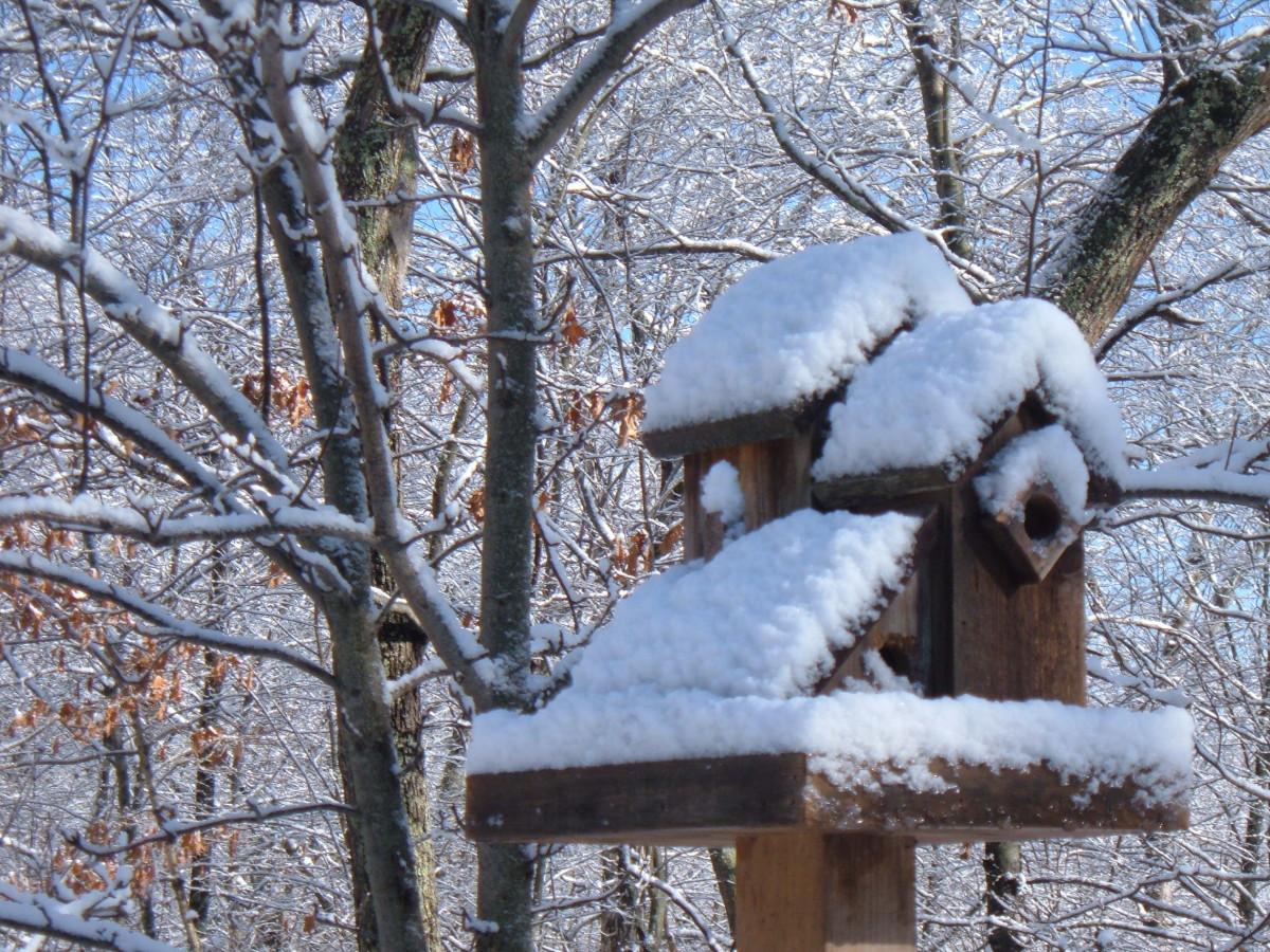 Winter Landscape Ideas: Birdhouses