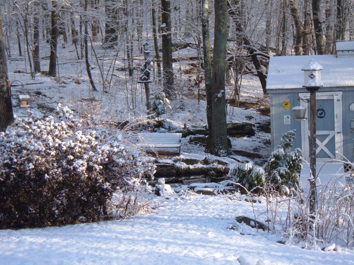 winter-landscape-ideas