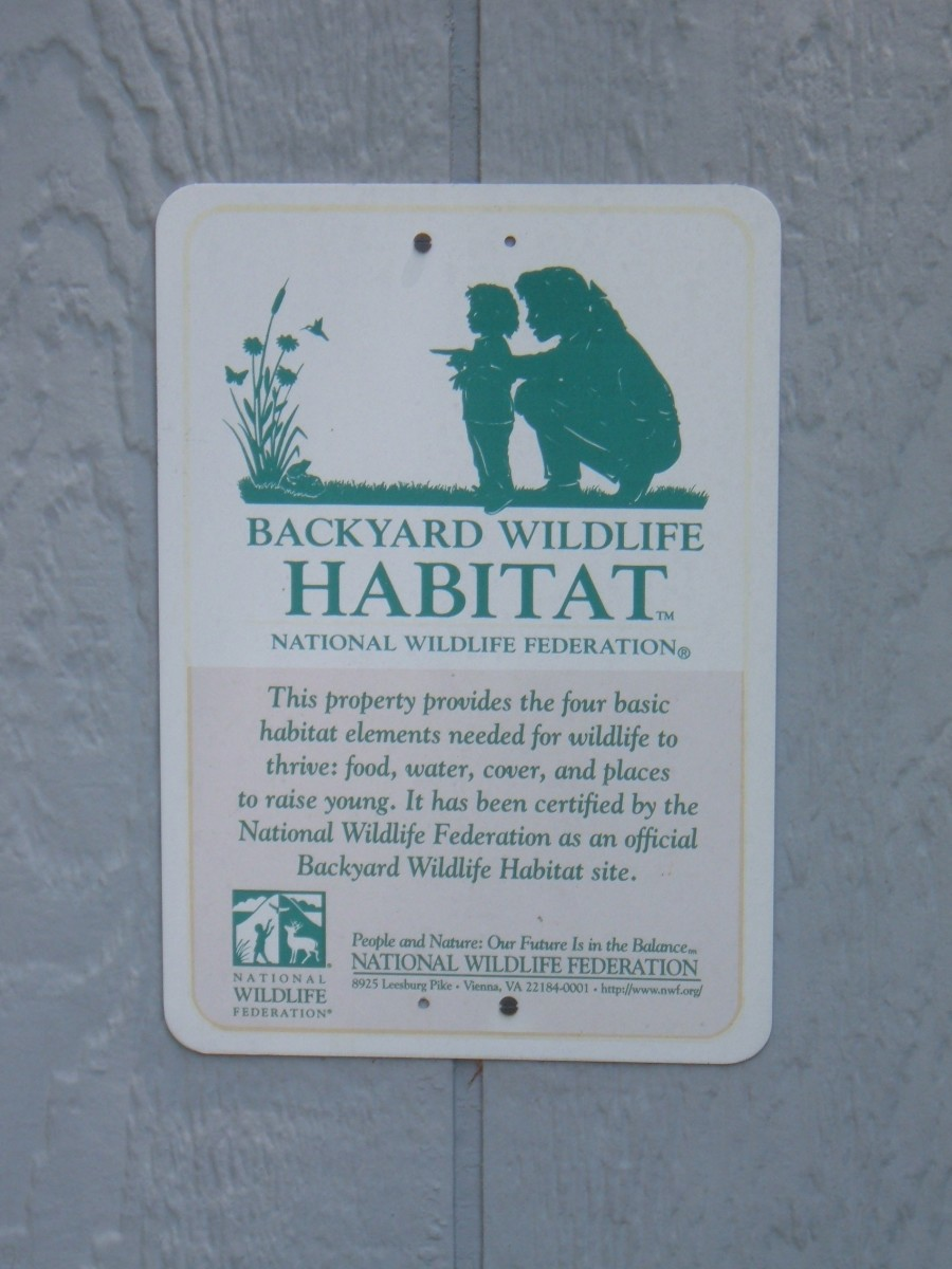 Our yard is a NWF Certified Backyard Habitat