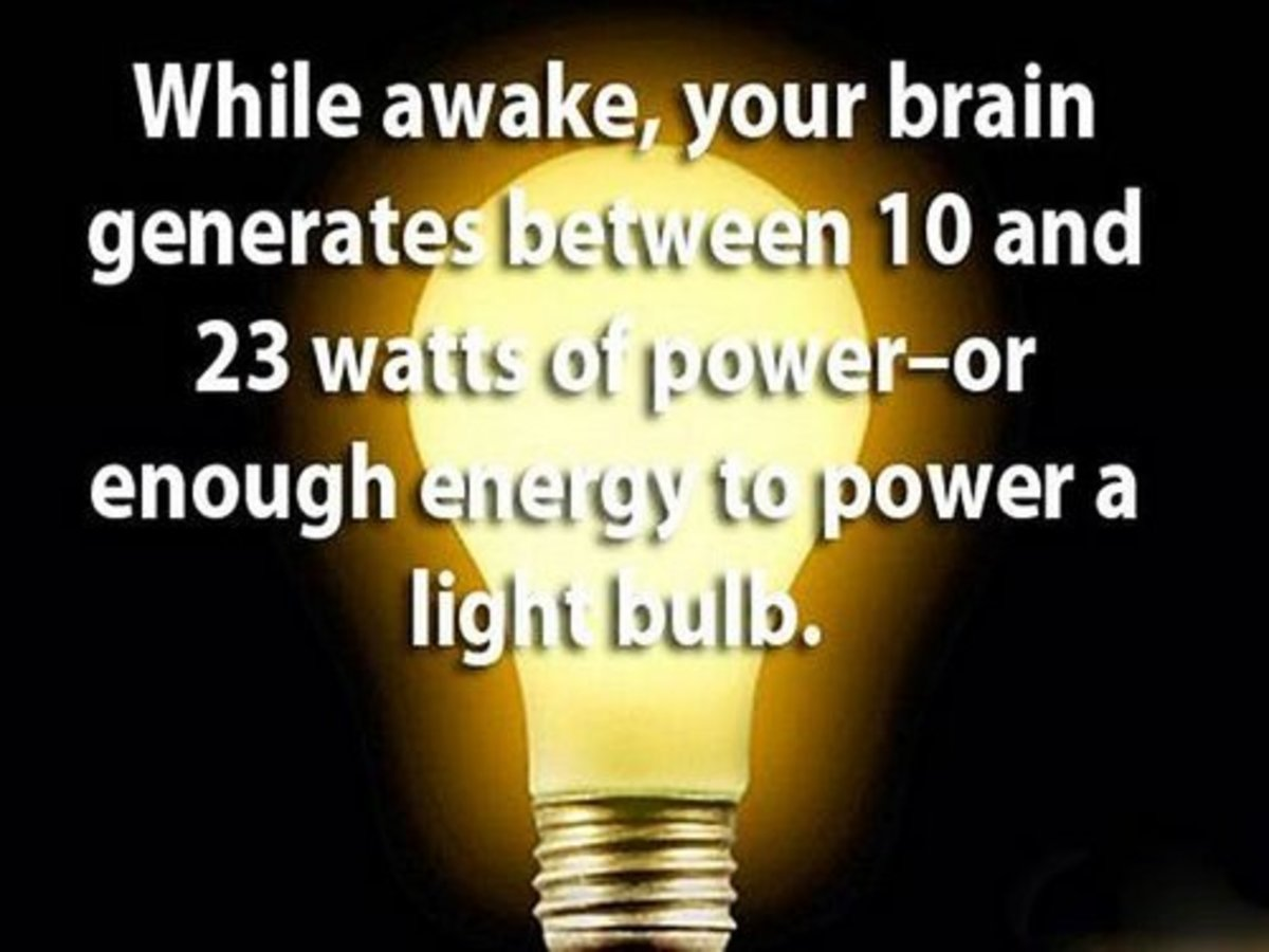 most-interesting-psychological-facts-about-human-nature-you-didnt-know-until-now