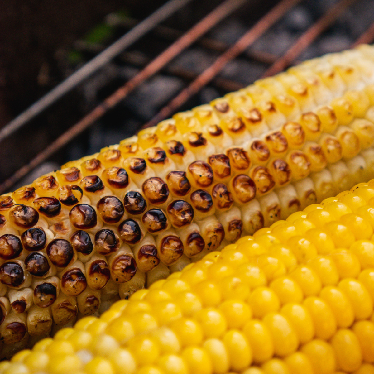 Learn four different ways to prepare delicious grilled corn on the cob.