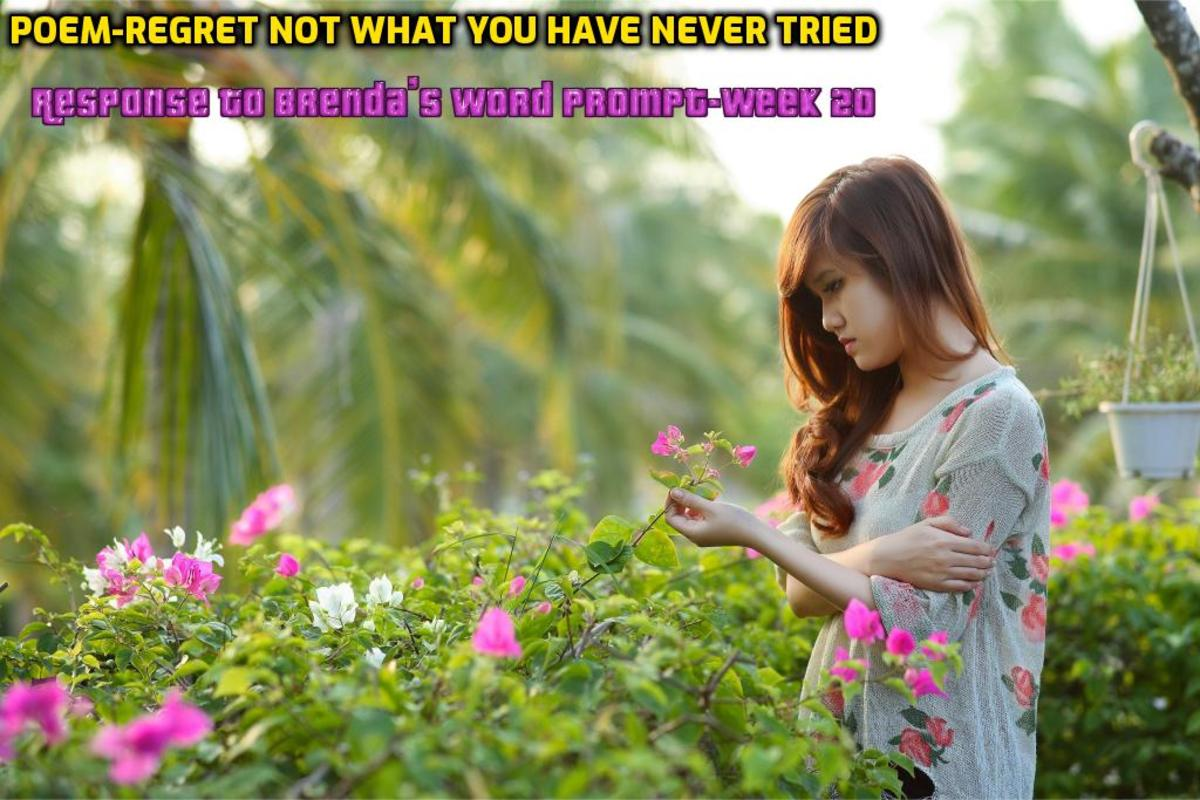 Regret Not What You Have Never Tried
