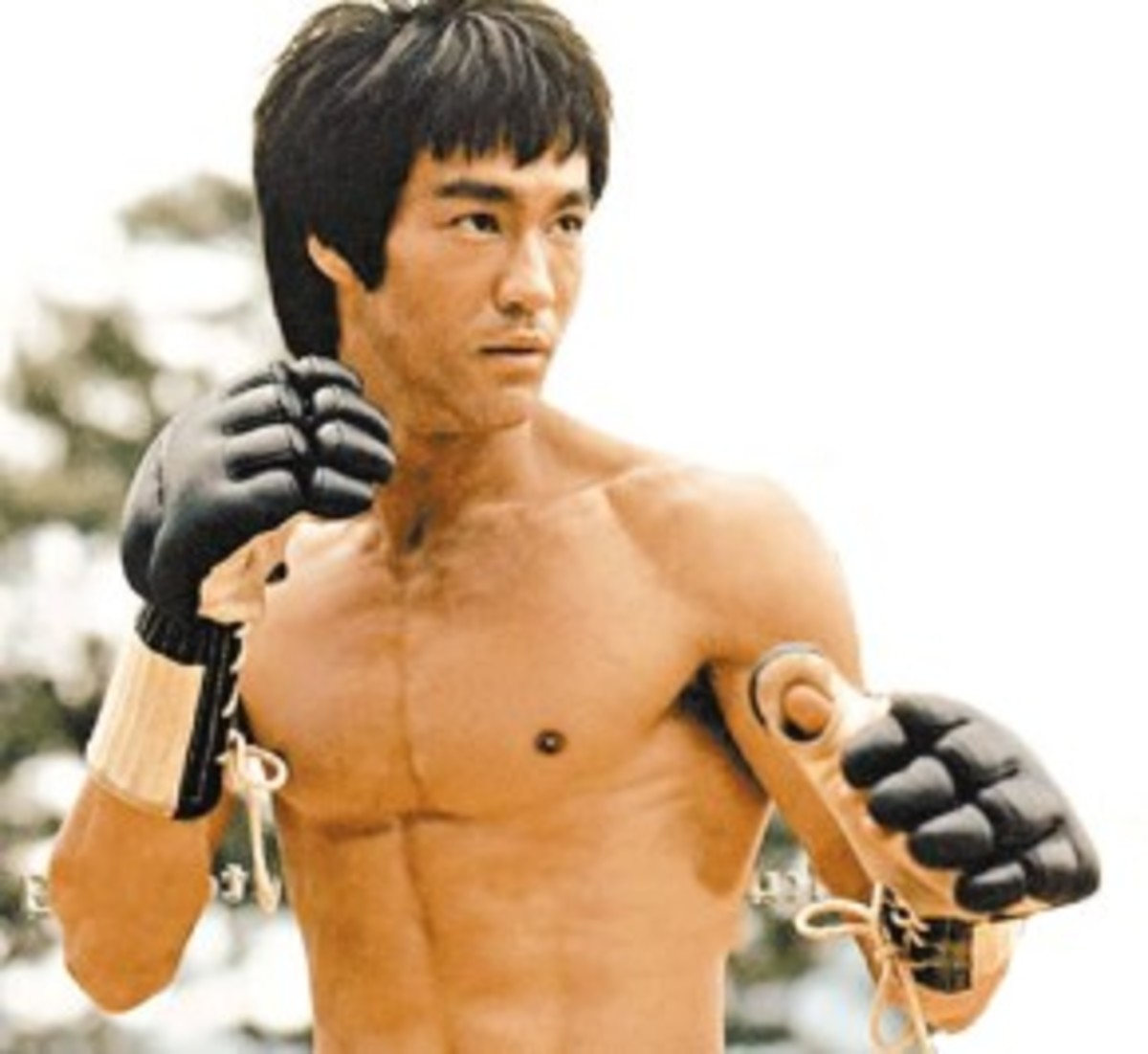 """As you think, so shall you become.""  A Bruce Lee Quote"