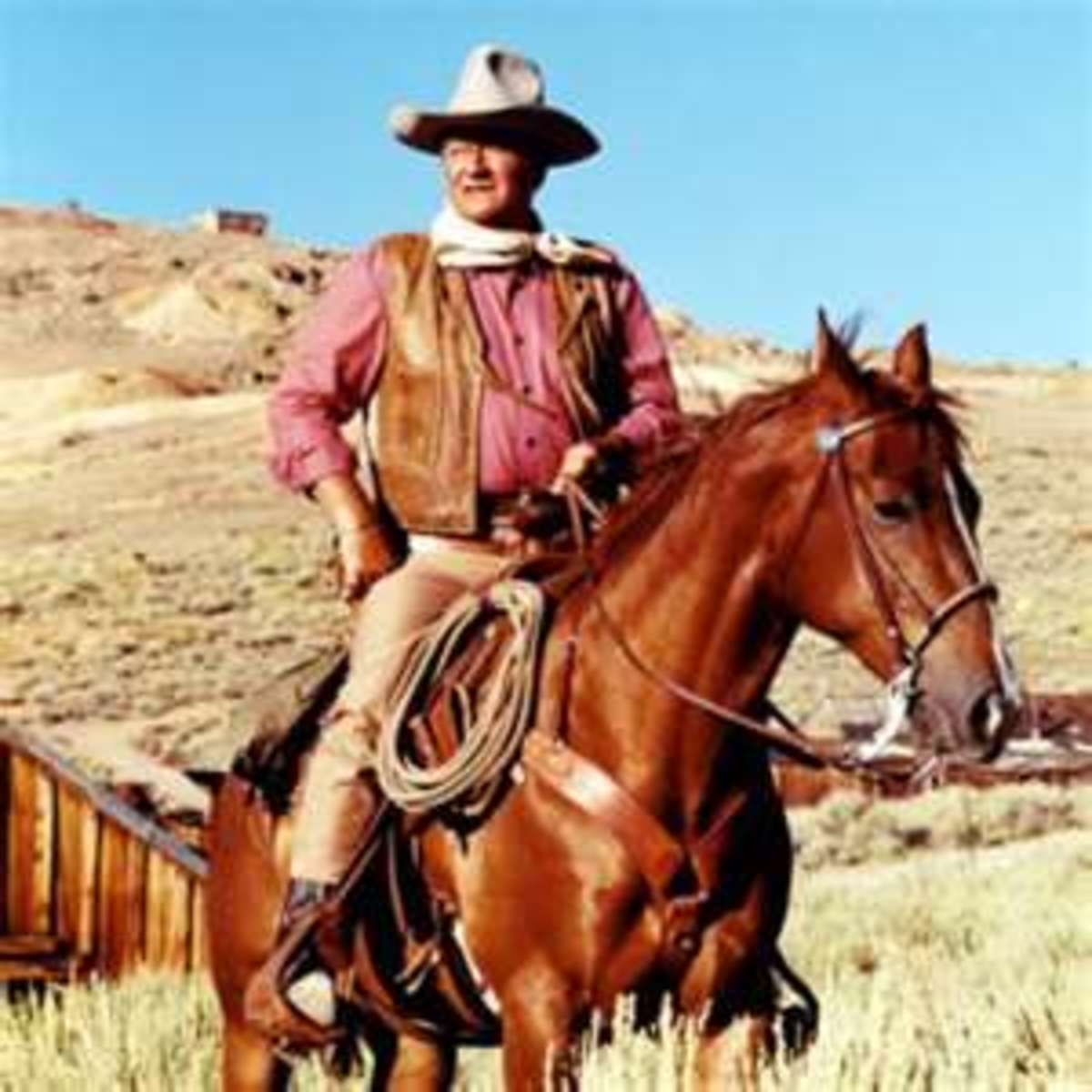 "John Wayne in any of his Classic Westerns: ""Rio Lobo"", ""Sons of Katie Elder"", ""El Dorado"", ""The War Wagon"", ""The Cowboys""...Etc.  (picture found on: http://www.allposters.com/-sp/John-Wayne-Posters_i2621411_.htm)"