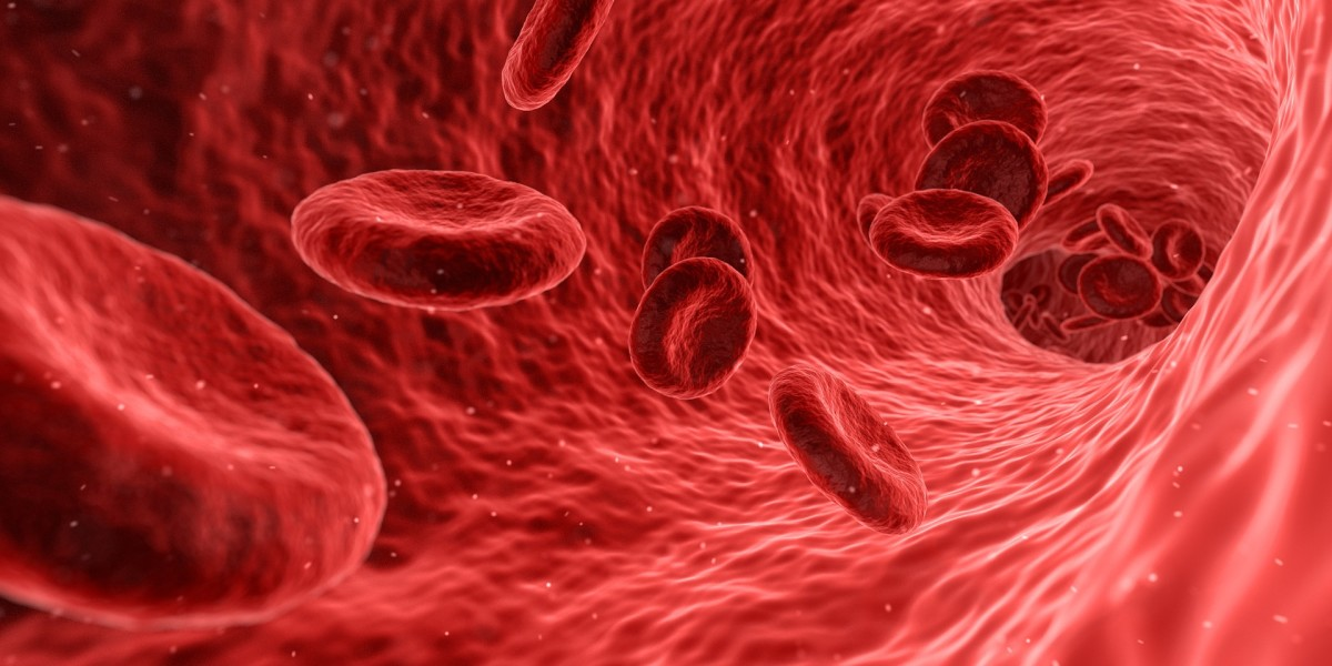 where-does-blood-come-from-the-river-of-life