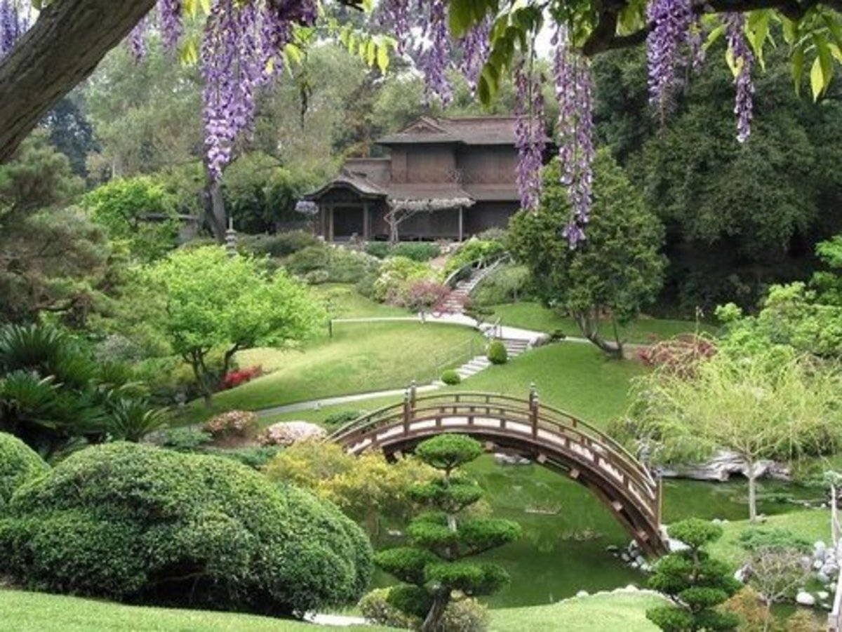 Huntington Library's Japanese Garden