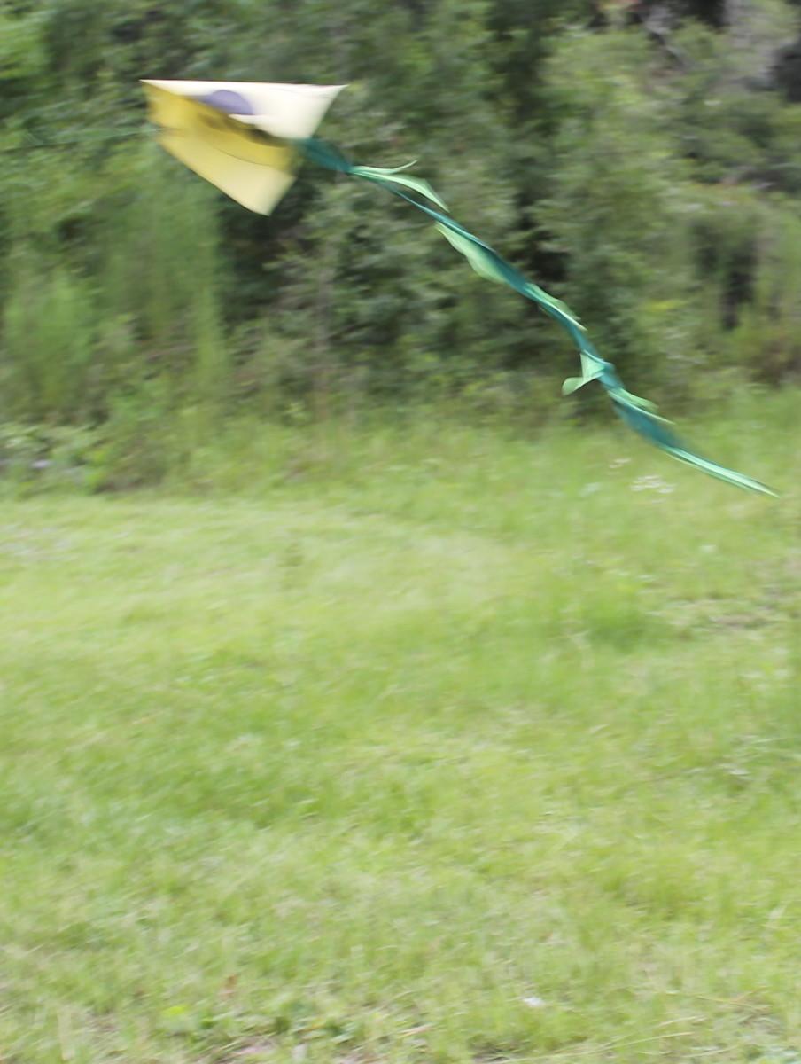 Flying homemade kites