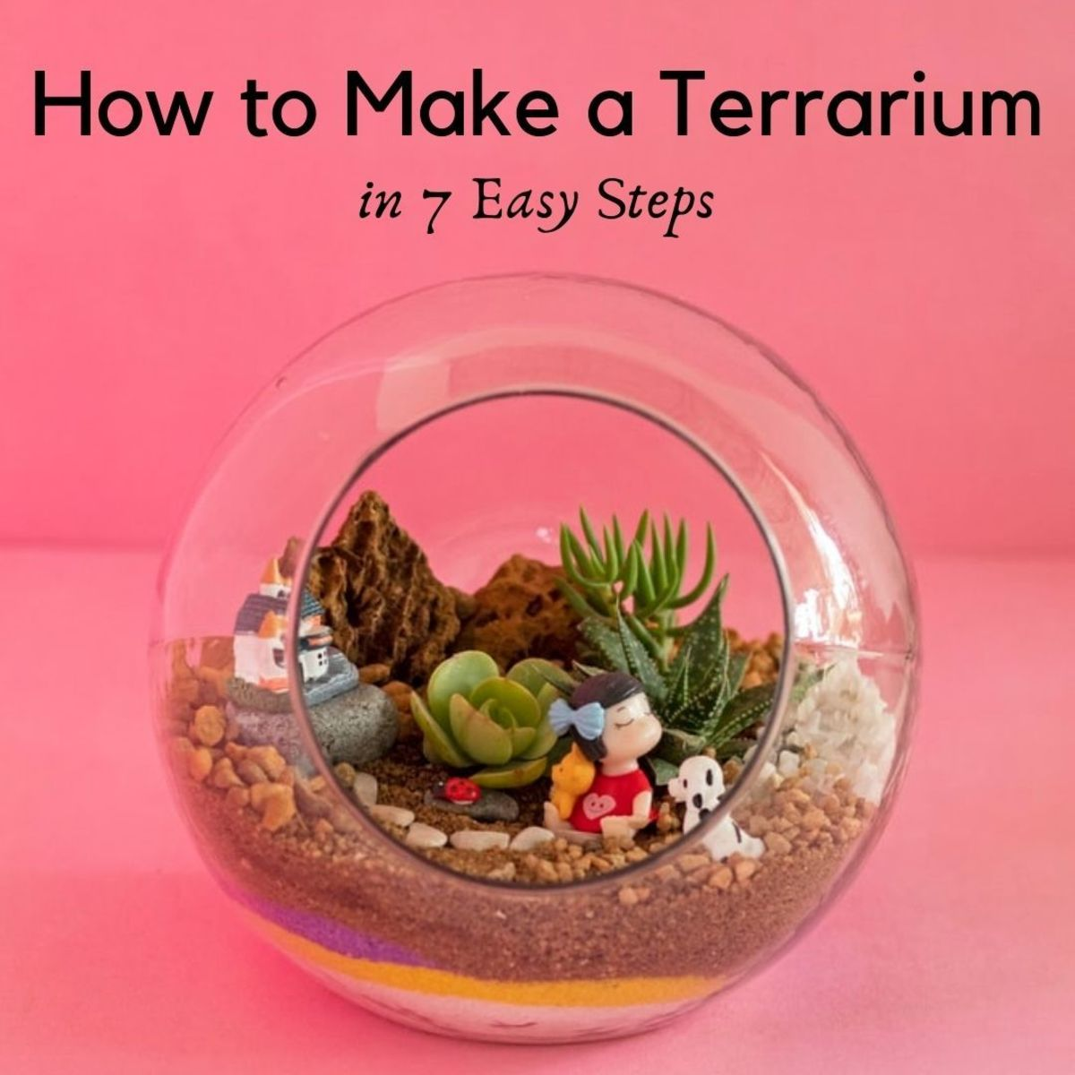 7 Steps to Make a Plant Terrarium