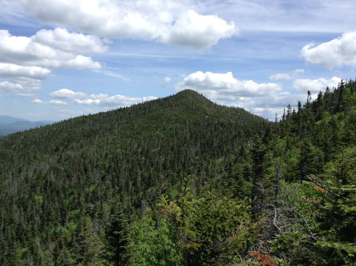 View of McKenzie