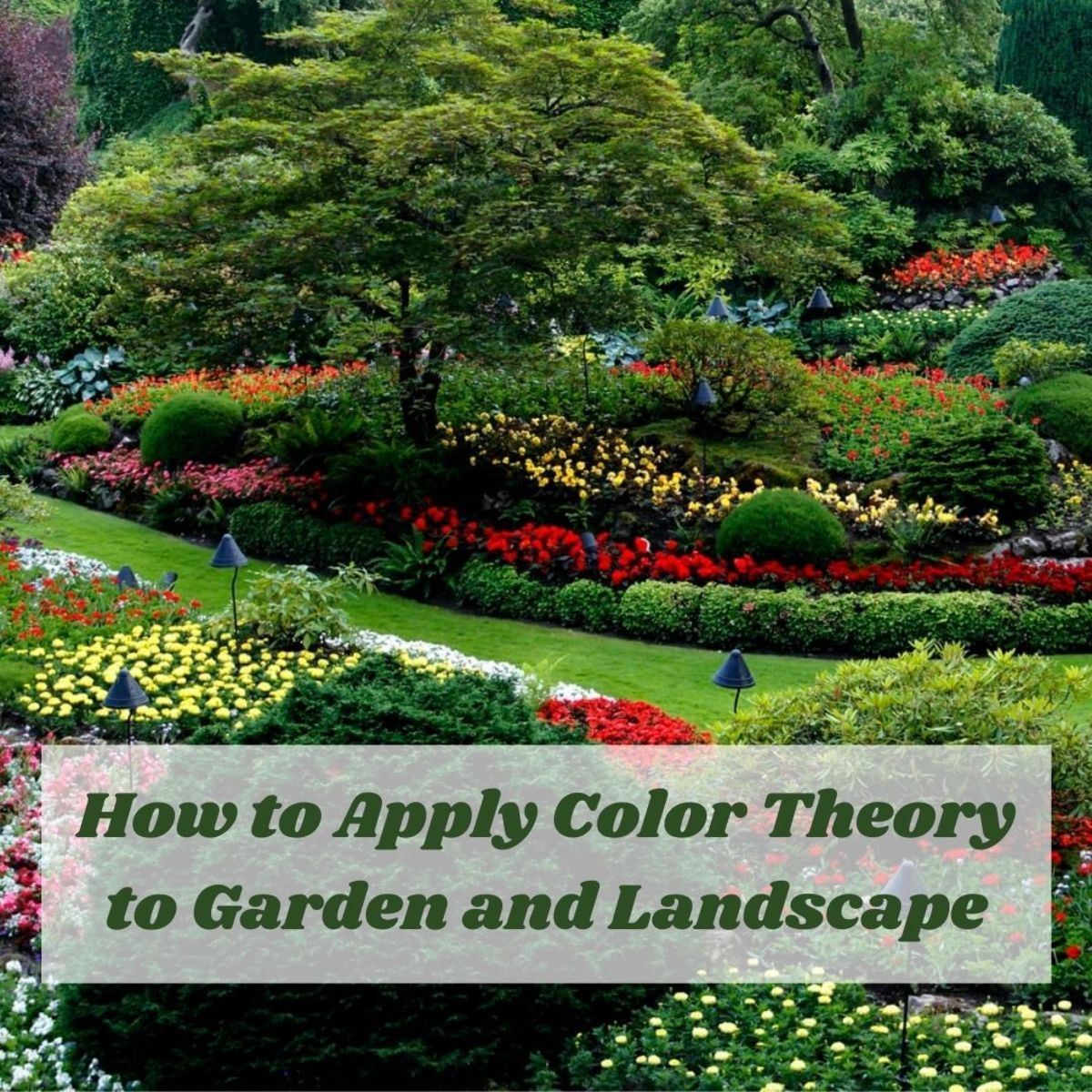 There are three basic principles when talking about color and color theory: the color wheel, color harmony, and context or application of its use.