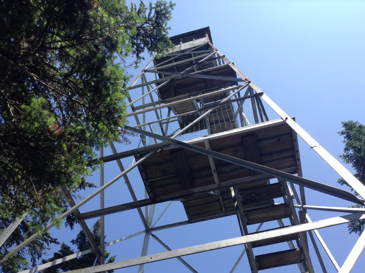 The Fire Tower/Summit