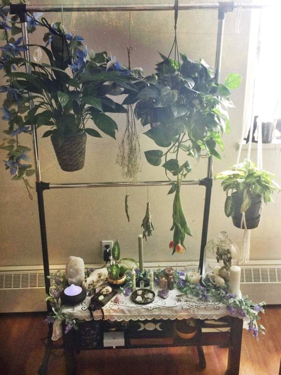 plants-are-the-life