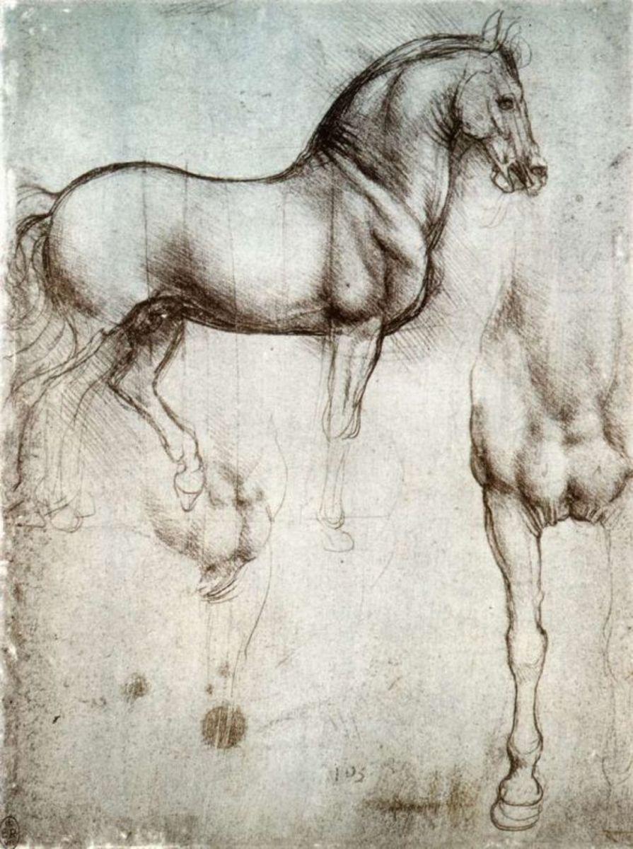 Leonardo's Study of a horse