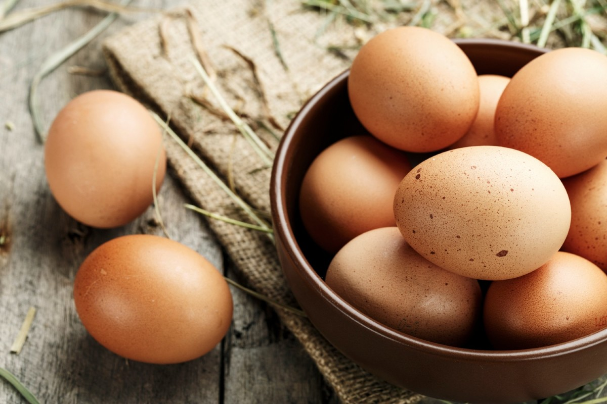 how-to-collect-chicken-eggs