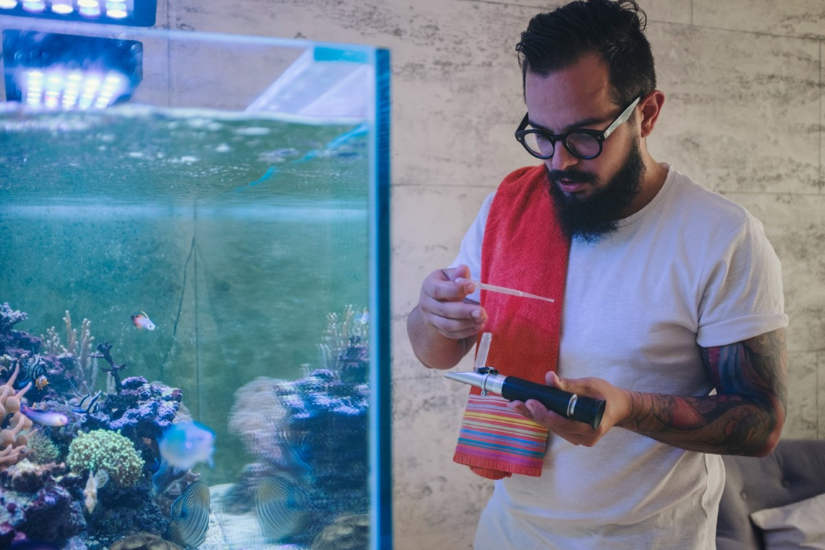 why-you-should-test-your-aquarium-water-and-what-to-look-for