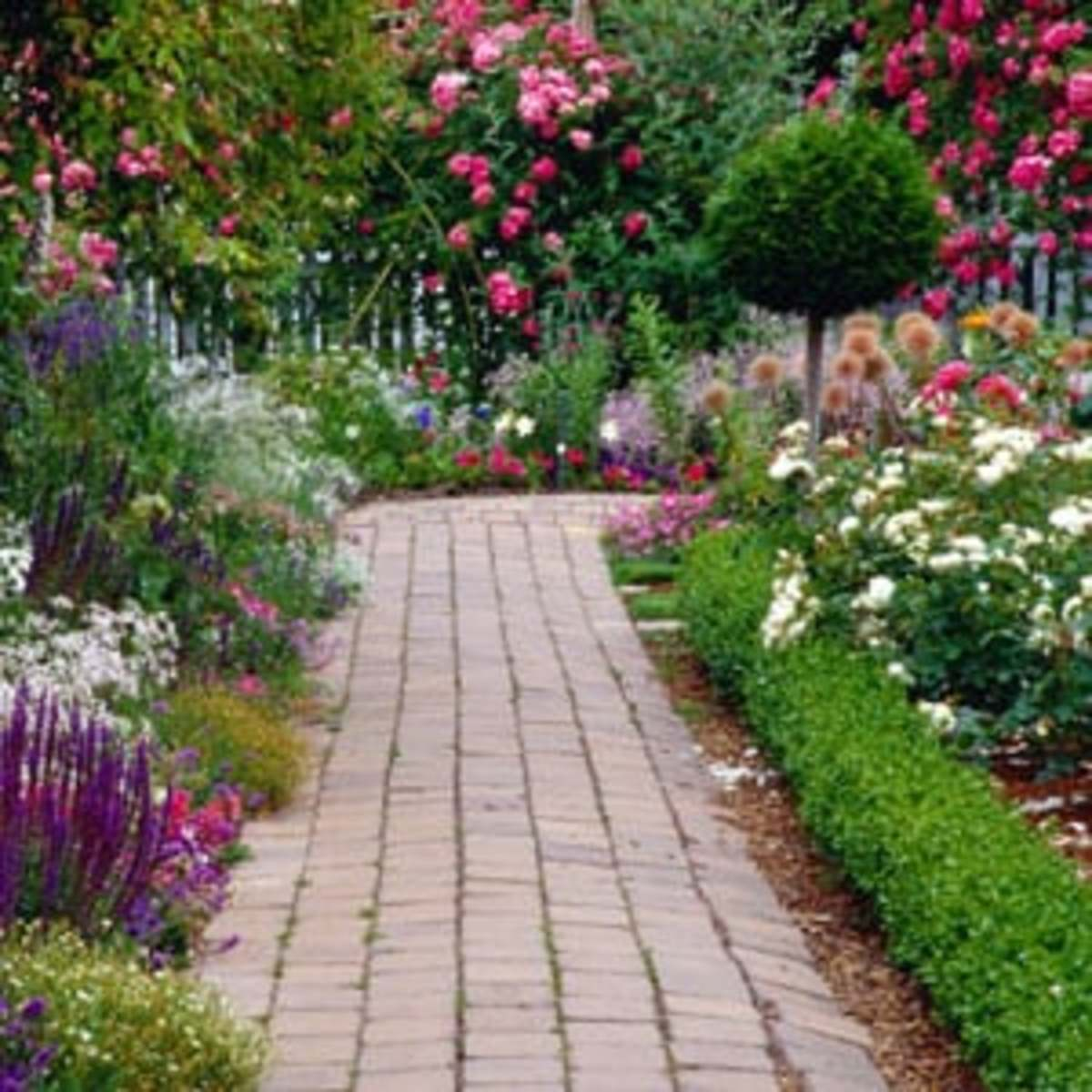 Bricks or pavers make an interesting walkway between flower beds.